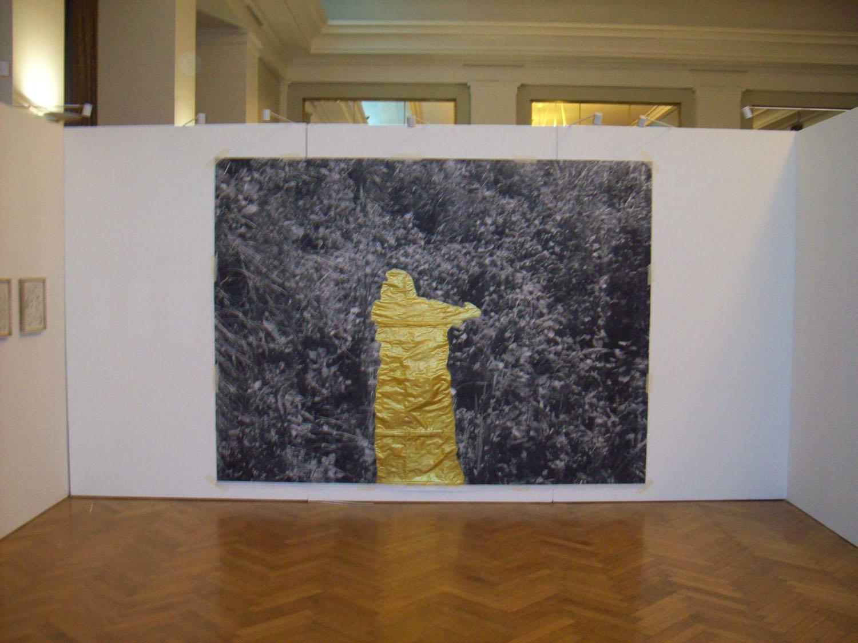 Figura del cauce, 300 x 250 cm, Montaje de fotocopias en Sala Auditorium Mar del Plata, Curaduría Daniel Besoytaroube 2012