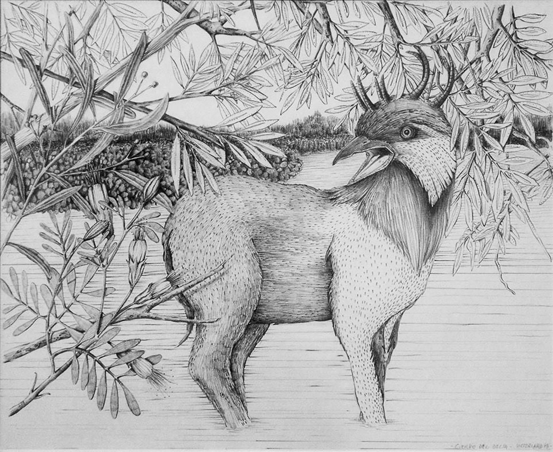 "Ciervo del Delta, de la serie ""De Otros Mundos"", Grafito s/papel, 50x40cm. 2012"