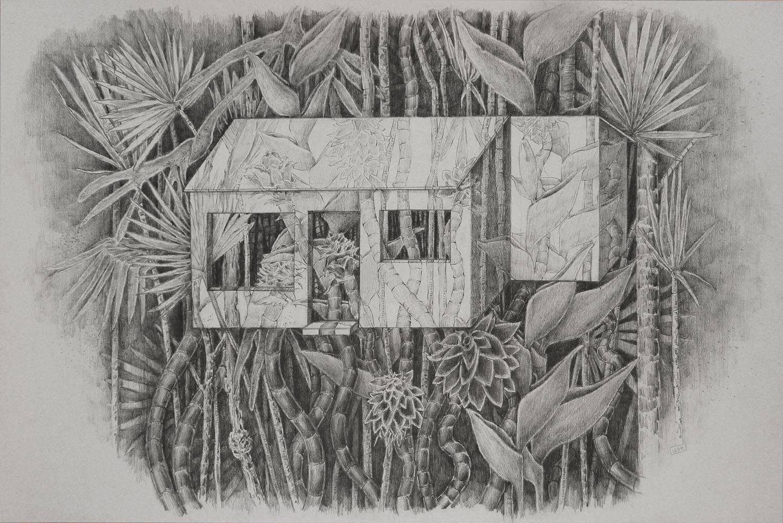Recuerdos para construir una casa. Grafito s/papel. 40x60cm. 2014