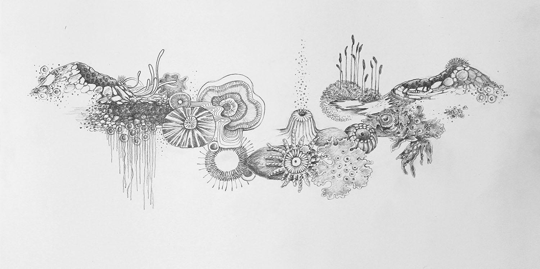 """ST, de la serie """"Cartografía de una emoción"""". Grafito s/papel 50x25cm. 2020"""